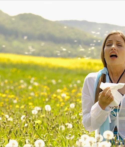 allergie-gross[1]