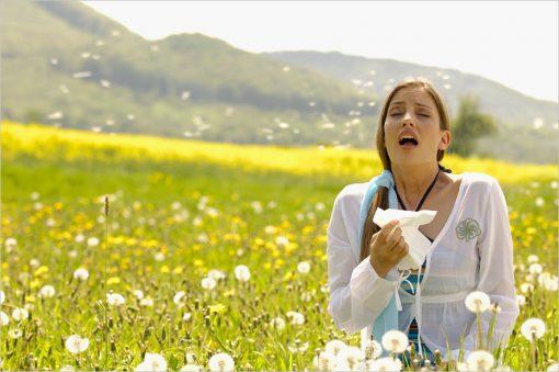 Allergien / Heuschnupfen